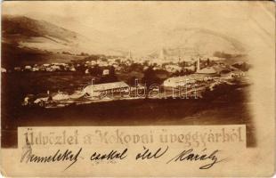 ~1900 Rimakokova, Kokava nad Rimavicou; Kokovai üveggyár / glass factory. photo (EK)