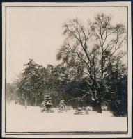 1929 Kinszki Imre (1901-1945) budapesti fotóművész hagyatékából, a szerző által feliratozott vintage fotó (Városliget, ez a szerző 79. számú felvétele), 6x6 cm