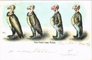1901 Vom Geier zum Meier / Keselyűből zsidó evolúció. Antiszemita gúnyos művészlap / Anti-Semitic mocking art postcard, Judaica litho (EK)