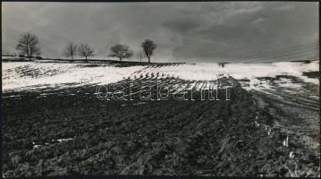 cca 1975 Zsigri Oszkár (1933-?) budapesti fotóművész hagyatékából, feliratozott vintage fotóművészeti alkotás (Havas táj), 13,2x24 cm