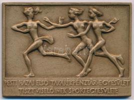 Madarassy Walter (1909-1994) 1939. Pesti Hazai első Takarékpénztár Egyesület Tisztviselőinek Sportegyesülete egyoldalas, öntött Br díjérem, hátoldalon gravírozva MILOS GYÖRGY EMLÉKVERSENY 1941 (50x69mm) T:1-