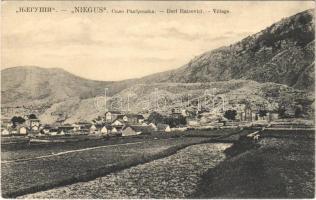 Raicevici (Njegus, Niegus), village