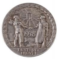 1938. Egyesült Erővel ezüstözött fém irredenta jelvény. Szign.: Sződy Szilárd (25mm) T:1-