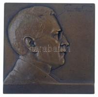 Ausztria 1910. Sven Hedin Br plakett. Szign.: Hugo Taglang (55x55mm) T:1-,2 Austria 1910. Sven Hedin Br plaque. Sign.: Hugo Taglang (55x55mm) C:AU,XF