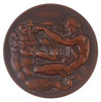 Berán Lajos (1882-1943) 1925. Magyar Athletikai Club 1875-1925 Br emlékérem peremén LUDVIG B gyártói jelzéssel (60mm) T:2,2- ph. HP 1413v
