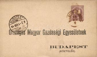 1894 Hivatalos díjjegyes levelezőlap HÓDMEZŐ-VÁSÁRHELY