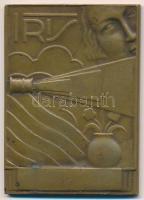 Belgium 1937. X. Írisz Nemzetközi Karácsonyi Szalon Br plakett (46x84mm) T:2,2- Belgium 1937. X. Internationaal Kerstsalon Iris - Antwerpen 1936-1937 Br plaque (46x84mm) C:XF,VF