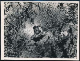 cca 1931 Kinszki Imre (1901-1945) budapesti fotóművész hagyatékából, feliratozott vintage fotóművészeti alkotás, 15,8x11,8 cm