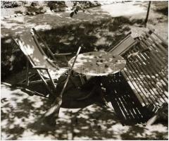 cca 1933 Thöresz Dezső (1902-1963) békéscsabai gyógyszerész és fotóművész hagyatékából vintage NEGATÍV (Kertrészlet seprűvel), 6x9 cm