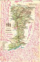 1901 Temes vármegye térképe. Kiadja Károlyi Gy. / Map of Timis county