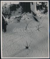 cca 1934 Kinszki Imre (1901-1945) budapesti fotóművész hagyatékából, pecséttel jelzett vintage fotó (Téli felvétel), 13,9x11,5 cm