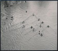 cca 1932 Kinszki Imre (1901-1945) budapesti fotóművész hagyatékából, pecséttel jelzett és aláírt vintage fotó (Kacsák), 11,4x12,8 cm