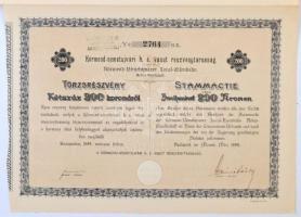 Budapest 1899. Körmend-németújvári helyi érdekű vasút részvénytársaság részvénye 200K-ról, szárazpecséttel, bélyegzéssel, szelvényekkel T:I- Hungary / Budapest 1899. Körmend-Güssing Local Railway Company share of 200 Corona C:AU
