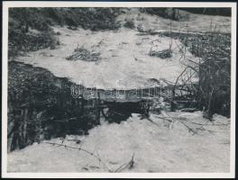 cca 1936 Kinszki Imre (1901-1945) budapesti fotóművész hagyatékából, a szerző által feliratozott, vintage fotó (Olvad a jég a nádas tavacskán), 12x16 cm