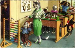 Cat school - modern postcard
