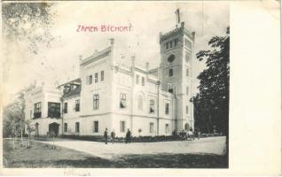 1907 Bychory, Zamek / castle (Rb)