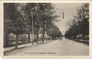 Tecuci, Tekucs; Bulevardul Elisabeta / street view (EK)