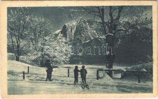 Der Winter als Landschaftsmaler / A tél, mint tájfestő / children with sled, winter sport