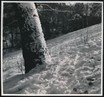 cca 1934 Kinszki Imre (1901-1945) budapesti fotóművész hagyatékából 1db vintage fotó, jelzés nélkül (téli hegyoldal), 17,3x18,5 cm