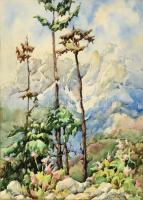 Barna Ilona (1897-1974): Magas Tátra, 1968. Akvarell, papír, jelzett, üvegezett fa keretben. 39x28 cm / Ilona Barna (1897-1974): High Tatras (Vysoké Tatry). Watercolour on paper. Signed. Framed with glass. 39x28 cm