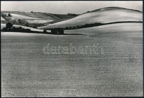 cca 1970 Zsigri Oszkár (1933-?) budapesti fotóművész hagyatékából, jelzés nélküli vintage fotóművészeti alkotás (mezőgazdasági táj), 16,3x24 cm