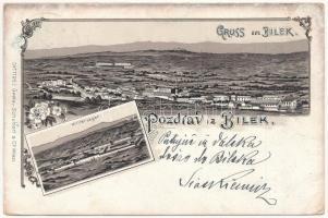 1898 (Vorläufer) Bileca, Bilek; Militär Lager / military barracks. Gustav Schubert & Co. No. 1185. Art Nouveau, floral, litho (EK)