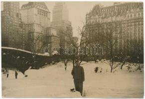 New York, Vintro en New York / Central Park in winter. photo (non PC) + Esperanto Internacia Lingvo por la tuta Mondo (crease)
