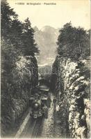 Brünigbahn, Passhöhe / rack railway, train, locomotive (EK)