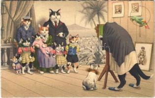 1958 Cat family. Max Künzli Zürich No. 4724.