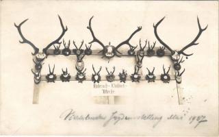 1927 Nußdorf am Attersee, Nussdorf; Jagdausstellung / hunting exhibition, antlers. Dr. Lechner photo (fl)