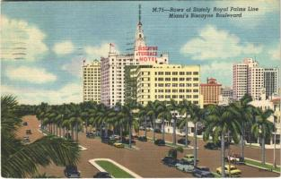 1953 Miami (Florida), rows of stately royal palms line, biscayne boulevard, automobiles, Biscayne Terrace Hotel