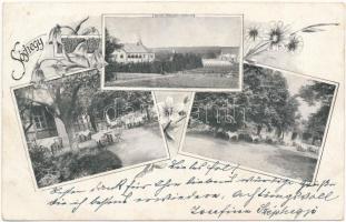 1900 Sóshegy, Sulzriegel (Tarcsa, Tarcsafürdő, Bad Tatzmannsdorf); Schlögel féle vendéglő, étterem, terasz, kert / restaurant, inn, terrace, garden. Art Nouveau, floral (EB)