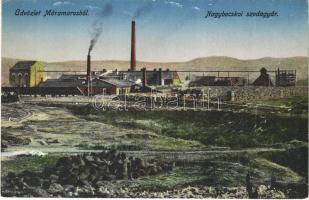 Nagybocskó, Velikij Bicskiv, Velykyy Bychkiv (Máramaros); szódagyár / soda factory