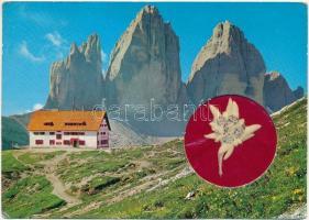 1966 Dolomiti, Tre Cime di Lavaredo / Dolomite, real mountain birch (Edelweiss flower) / Dolomitok, igazi havasi gyopár