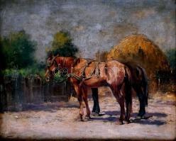 Csillag József (1894-1977): Lovak. Olaj, vászon, jelzett, sérült (apró lyukakkal). Dekoratív fa keretben. 55,5×68 cm