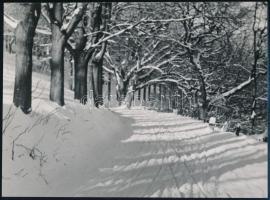 cca 1936 Kinszki Imre (1901-1945) budapesti fotóművész hagyatékából, jelzés nélküli vintage fotóművészeti alkotása (havas erdei út), 17,7x24 cm