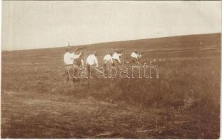A front mögött, katonák aratják a terményt a menázsihoz / WWI Austro-Hungarian K.u.K. military, soldiers harvest the crop. photo