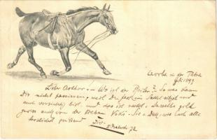 1899 (Vorläufer) Czorba in der Tatra, Csorbató (Vysoke Tatry); ló / horse (EK)