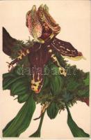 Stanhopea tigrina. Botanischer Garten München-Nymphenburg / Orchid flower. Reichhold & Lang Lith. Kunstanstalt litho s: Kurt Dieterich (EK)