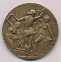 Franciaország ~1900-1920. FLORE kétoldalas Br emlékérem, peremen BRONZE fémjel. Szign.: Vediey (50mm) T:1-,2 ph. France ~1900-1920. FLORE double-sided Br commemorative medallion with BRONZE hallmark on edge. Sign.: Vediey (50mm) C:AU,XF edge error
