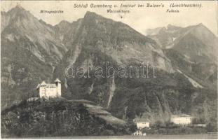 1914 Balzers, Schloss Gutenberg und Institut, Mittagsspitze, Würznerhorn, Falknis / castle