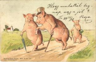 1899 (Vorläufer) Malac udvarló / Pigs on a walk. Gebrüder Obpacher Serie VI. No. 15994. litho