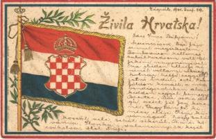 1901 Zivila Hrvatska. Naklada Eugena Selzera u Osijeku / Long live Croatia. Embossed Croatian flag, Art Nouveau, litho / Éljen Horvátország! Dombornyomott szecessziós litho zászló (EK)