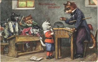 Anschauungsunterricht / Macska iskola / Cat school. T.S.N. Serie 1326. (felszíni sérülés / surface damage)