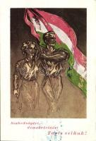 For the Freedom and Democracy; Hungarian propaganda, flag So. Stpl, 'Szabadságért, demokráciáért' Magyar propaganda, zászló 'Partizán barátok Szövetsége' So. Stpl
