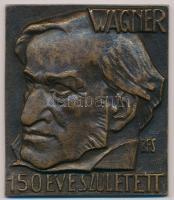 Boldogfai Farkas Sándor (1907-1970) 1963. Wagner 150 éve született egyoldalas Br emlékplakett (50x57mm) T:2