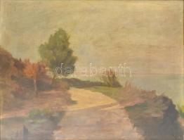 Jelzés nélkül: Balatoni tájkép. XX. sz. eleje. Olaj, vászon, Üvegezett keretben. 55x60 cm