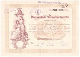 Szekszárd 1924. A Szekszárdi Takarékpénztár 10db részvénye egyenként 25.000K-ról, felülbélyegzéssel, szárazpecséttel, szelvényekkel T:III