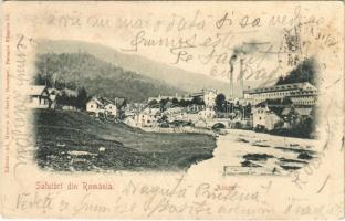 1901 Azuga, Salutari din Romania / factory (EK)