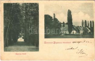 1900 Bajmóc, Bojnice; fürdő / spa (EK)
